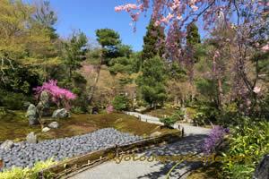 Tenryu-ji Temple garden 063