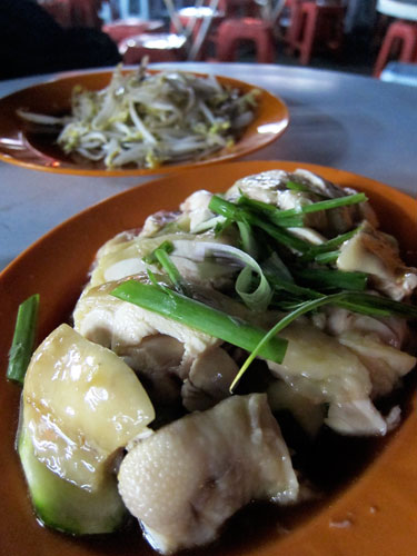 steamed chicken and bean sprouts