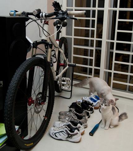my sports equipment