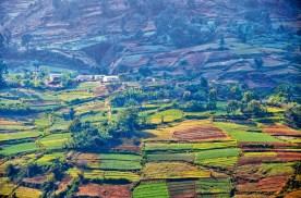 Vie rurale en Haïti (photo Christiane Dumont)_CMYK.jpg