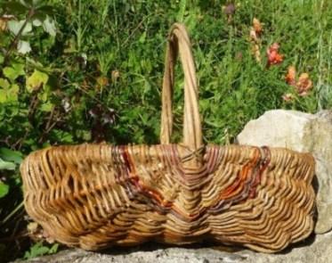 Panier sur arceaux en clématite