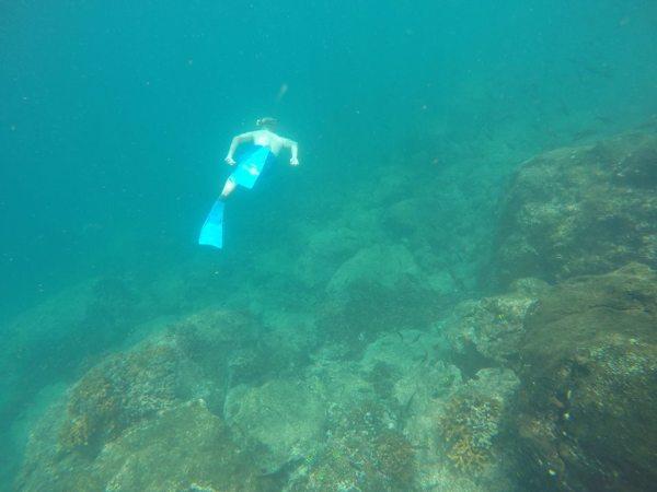 Snorkel en isla Coiba