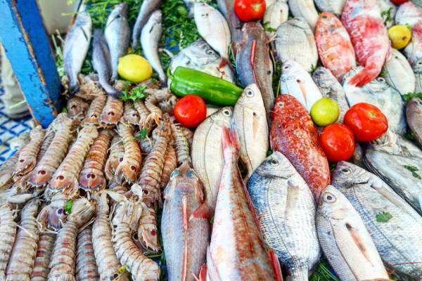 Pescado fresco, Essaouira
