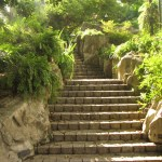 Commitment to your Path II