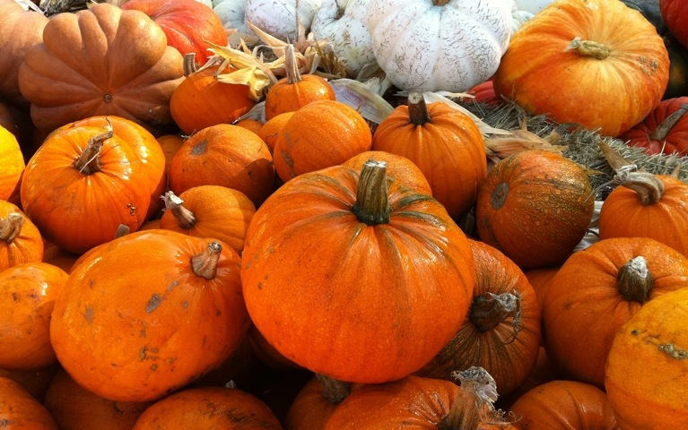 On Pumpkins and Other Weighty Matters (1/3)