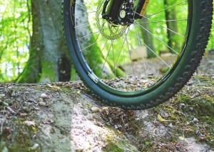 mountain-bike-841850_640