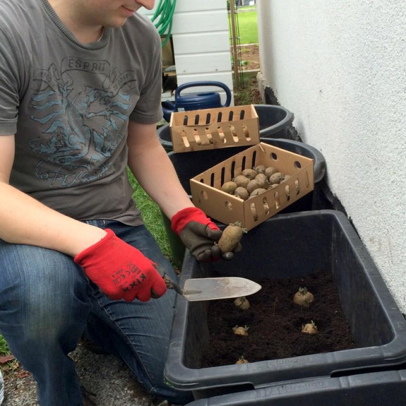 Die Kübel aus dem Baumarkt werden auf dem Boden mehrmals durchbohrt, damit das Gieß- bzw. Regenwasser abfließen kann. Eine Drainageschicht aus Blähton ist zusätzlich empfehlenswert.