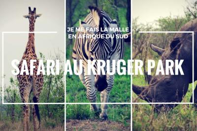 parc kruger blog