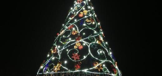 Baguio-Christmas-Tree-Session-Road