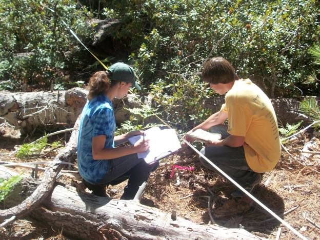 Emily Barnett and Tyler Myers gathering vegetation data for their research project,  which they will present at the 9th Annual Junior Foresters Competition in Moscow.