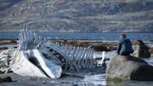 Leviathan, película de Andréi Zviáguintsev