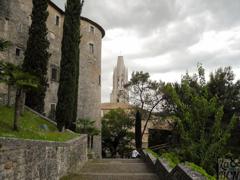 Girona flors 255