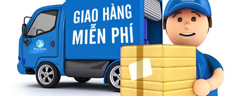 giao hàng miễn phí tại TPHCM và Hà Nội