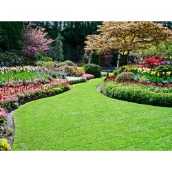 Small Crop Of Land Images Landscaping