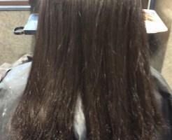 毛先がガリガリになった画像です。当店で縮毛矯正をかける前のビフォーの写真です。後ろから写した画像です。 根元は新生毛で癖が確認出来ます。中間部からうねりが出ています。