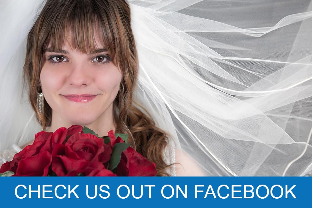 Lansing Bridal Show Facebook