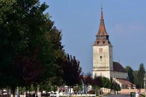 Biserica Feldioara (7) (Copy)