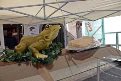foire-commerciale-grenouilles (2)