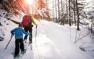 snowshoeing in a sunny day in Lapland