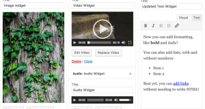 WordPress-widget-updates