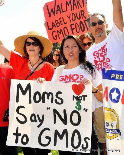 Moms standing up for health, and protesting against Monsanto. (Courtesy of momsacrossamerica.com)