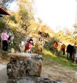 Casas_Agapito_C.T._Rural_44-2