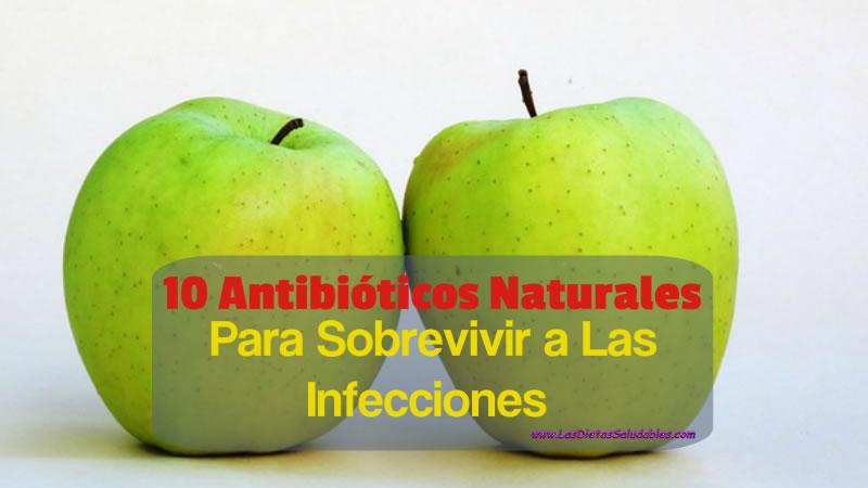 10 Antibióticos Naturales Para Sobrevivir a Las Infecciones