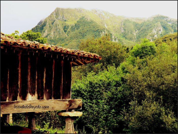 Hórreo en Bueida bajo el Campu Faya (1.942 metros)