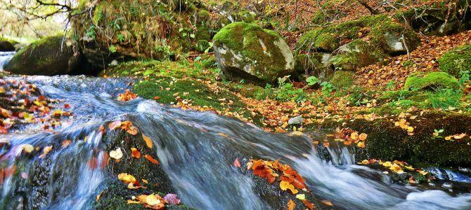 Paisajes y versos para el otoño leonés