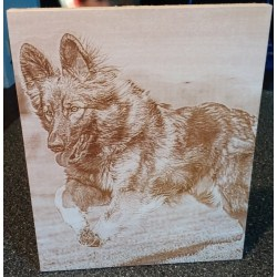 Adorable Laser Engraved Basswood Pet Memorial Photo Gifts Gallery Lasered Engrave Detail Pet Memorial Gifts Uk Pet Memorial Gifts Ireland gifts Pet Memorial Gifts