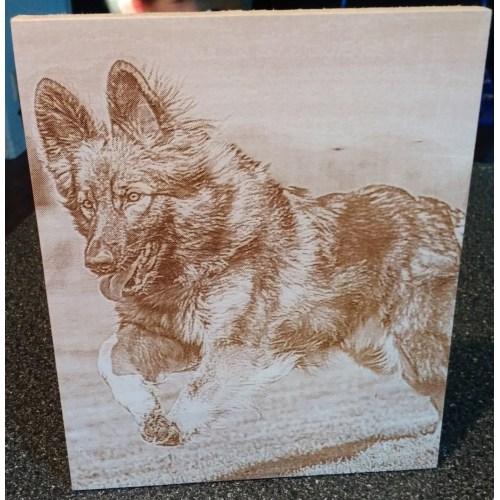 Medium Crop Of Pet Memorial Gifts