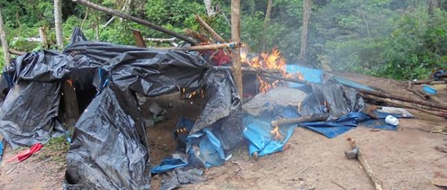 Destruyen campamentos de mineros ilegales