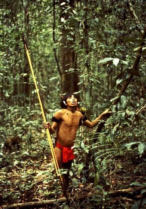 Cazador yanomami en la selva venezolana. Foto: Survival International