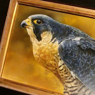 My painting, Eye of the Sentinel - Peregrine Falcon, on its way to Singapore for 2015's largest exhibition of wildlife art in Asia hosted by Mandala Fine Art @mandalafineart at Orchard Gateway