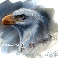 Bald Eagle Miniature