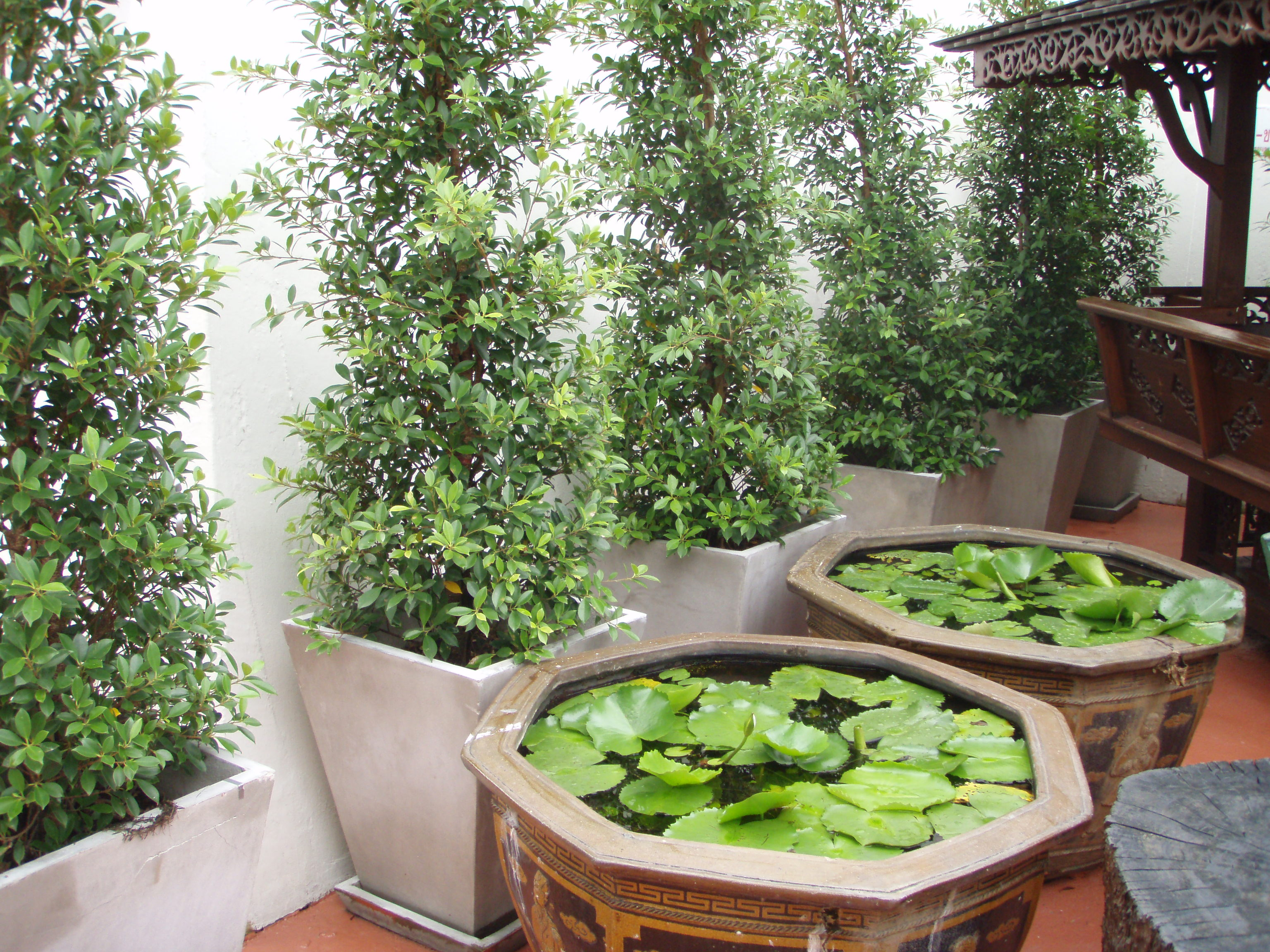 Fullsize Of Hanging Garden Ideas