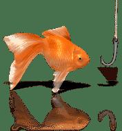 fish joke