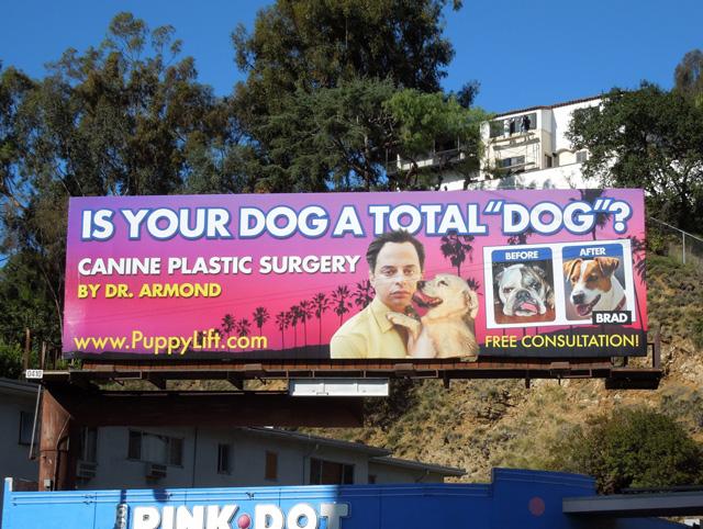 Canine Plastic Surgery