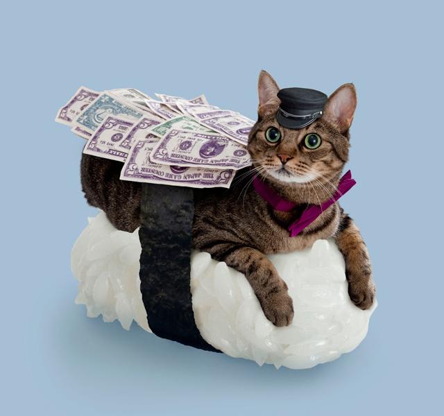 Son Sushi Cat