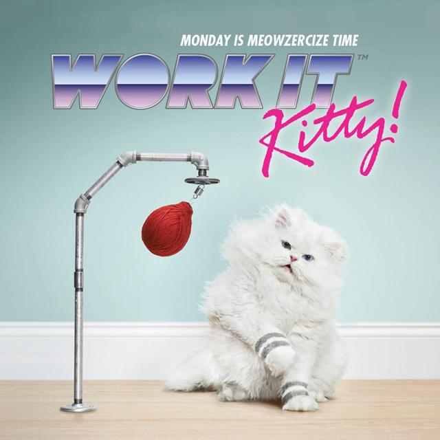 Work It Kitty