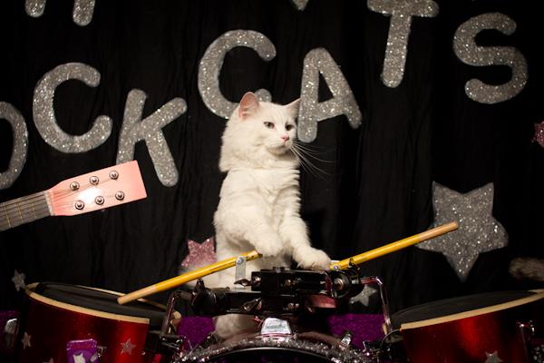 Dakota on Drums