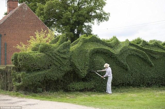 Massive Dragon Hedge Topiary