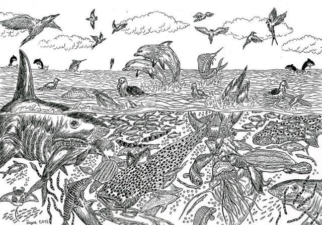 Astonishingly Detailed Nature Drawings by 11-Year-Old Dusan Krtolica