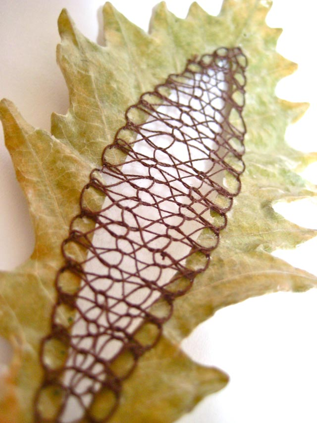 Embroidered Leaves by Hillary Fayle