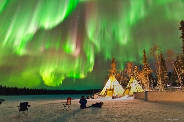 Auroras Near Yellowknife