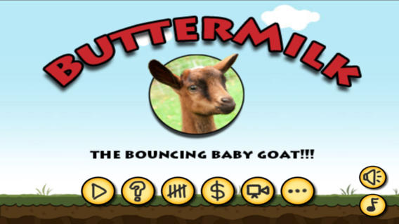 Buttermilk the Bouncing Baby Goat