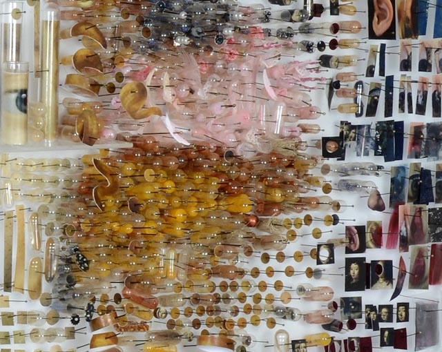 Dutch Master Paintings Recreated as Photographic Specimen Art by Michael Mapes