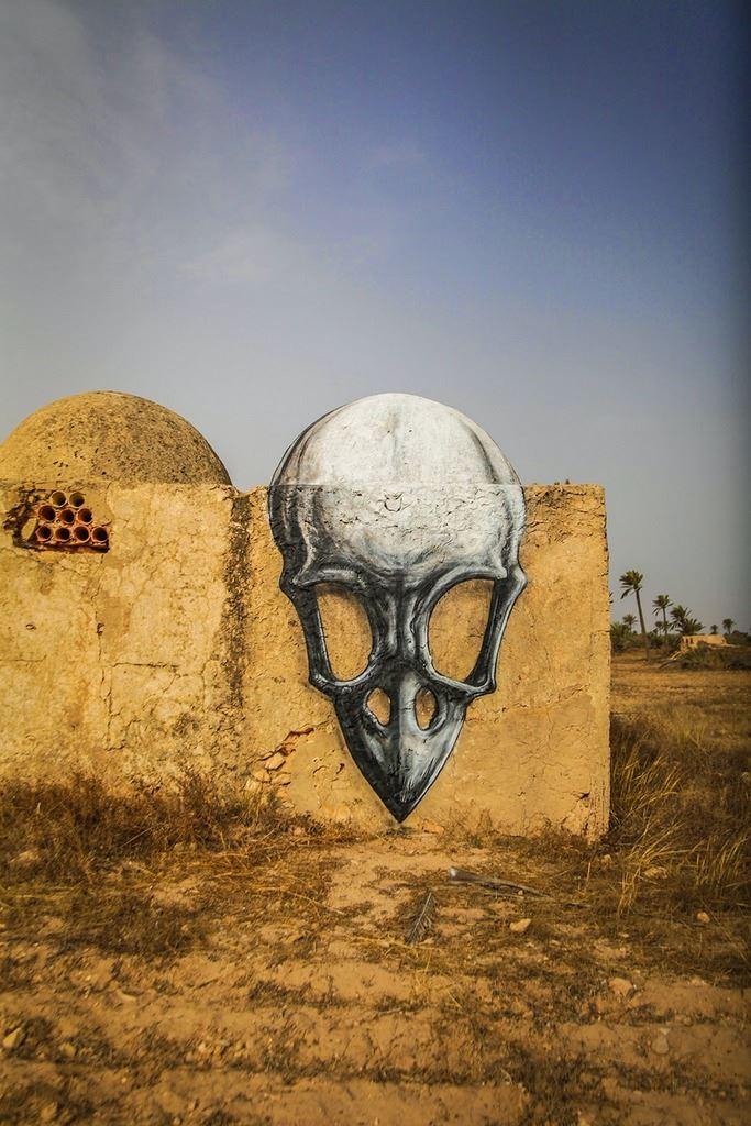 Beautiful Animal Street Art in Tunisia by ROA