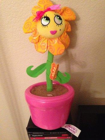 Moovin Groovin Flower