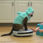 Cat Wearing a Shark Costume Entertains Baby Also Dressed as a Shark by Riding a Roomba Vacuum in the Kitchen